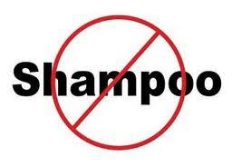 No-Poo Logo